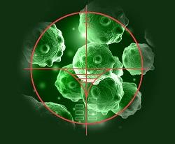Les nanomatériaux sous surveillance