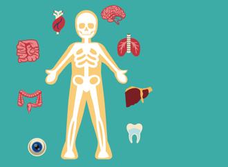Découvrez l'autopsie verbale, pour mieux établir les priorités en santé.
